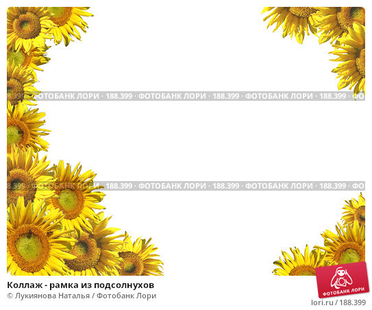 Купить «Коллаж - рамка из подсолнухов», иллюстрация № 188399 (c) Лукиянова Наталья / Фотобанк Лори