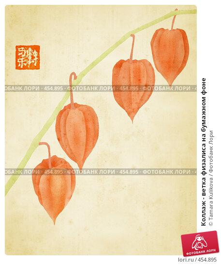 Купить «Коллаж - ветка физалиса на бумажном фоне», иллюстрация № 454895 (c) Tamara Kulikova / Фотобанк Лори