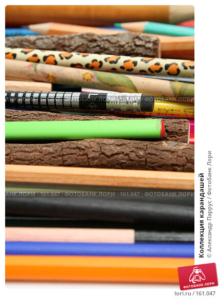 Купить «Коллекция карандашей», фото № 161047, снято 9 октября 2006 г. (c) Александр Паррус / Фотобанк Лори