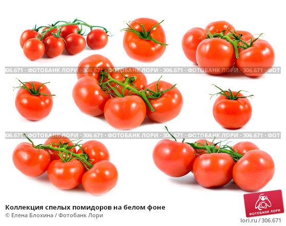 Коллекция спелых помидоров на белом фоне, фото № 306671, снято 26 мая 2017 г. (c) Елена Блохина / Фотобанк Лори