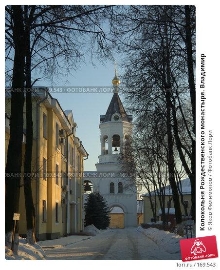 Колокольня Рождественского монастыря. Владимир, фото № 169543, снято 1 января 2008 г. (c) Яков Филимонов / Фотобанк Лори