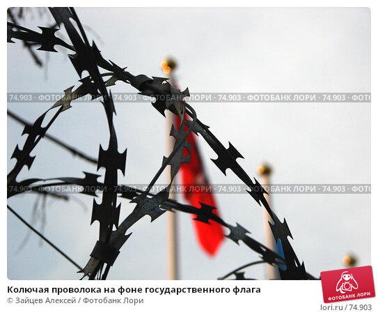 Колючая проволока на фоне государственного флага, фото № 74903, снято 23 августа 2007 г. (c) Зайцев Алексей / Фотобанк Лори
