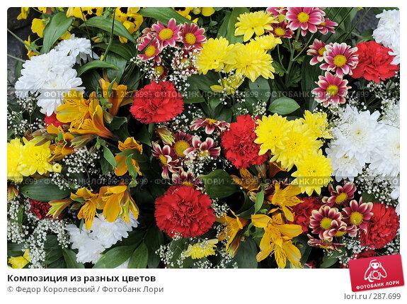 Композиция из разных цветов, фото № 287699, снято 15 мая 2008 г. (c) Федор Королевский / Фотобанк Лори