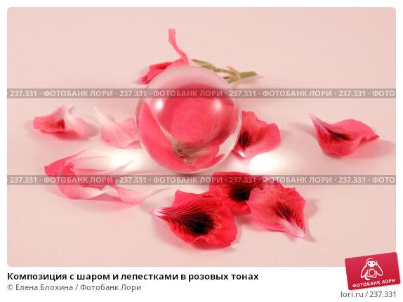 Композиция с шаром и лепестками в розовых тонах, фото № 237331, снято 30 марта 2008 г. (c) Елена Блохина / Фотобанк Лори