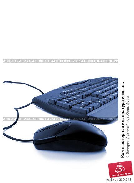 Компьютерная клавиатура и мышь, фото № 230943, снято 19 декабря 2007 г. (c) Валерия Потапова / Фотобанк Лори