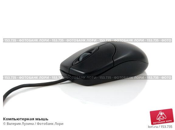 Компьютерная мышь, фото № 153735, снято 19 декабря 2007 г. (c) Валерия Потапова / Фотобанк Лори