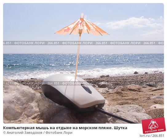 Купить «Компьютерная мышь на отдыхе на морском пляже. Шутка», фото № 266851, снято 14 сентября 2006 г. (c) Анатолий Заводсков / Фотобанк Лори