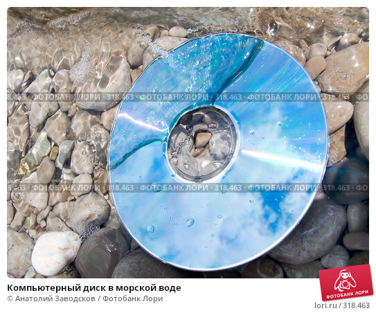 Компьютерный диск в морской воде, фото № 318463, снято 27 мая 2006 г. (c) Анатолий Заводсков / Фотобанк Лори