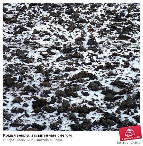 Комья земли, засыпанные снегом, фото № 178047, снято 25 октября 2006 г. (c) Вера Тропынина / Фотобанк Лори