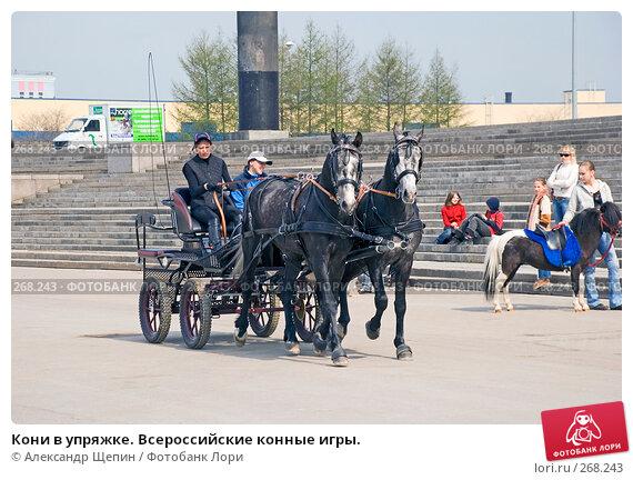 Кони в упряжке. Всероссийские конные игры., эксклюзивное фото № 268243, снято 27 апреля 2008 г. (c) Александр Щепин / Фотобанк Лори