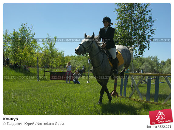 Конкур, фото № 322271, снято 12 июня 2008 г. (c) Талдыкин Юрий / Фотобанк Лори
