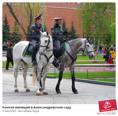 Конная милиция в Александровском саду, эксклюзивное фото № 273667, снято 2 мая 2008 г. (c) lana1501 / Фотобанк Лори