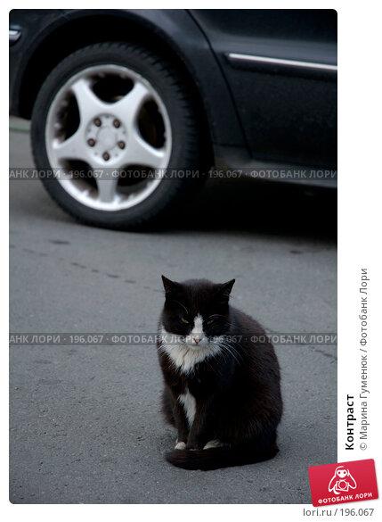 Контраст, фото № 196067, снято 23 июня 2007 г. (c) Марина Гуменюк / Фотобанк Лори