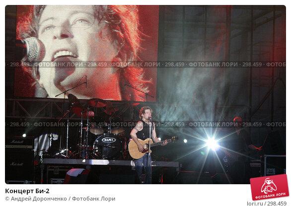 Концерт Би-2, фото № 298459, снято 22 января 2017 г. (c) Андрей Доронченко / Фотобанк Лори
