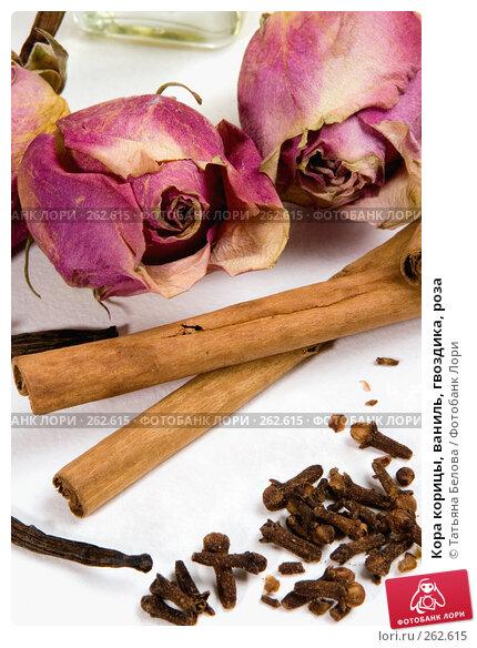 Кора корицы, ваниль, гвоздика, роза, фото № 262615, снято 20 апреля 2008 г. (c) Татьяна Белова / Фотобанк Лори