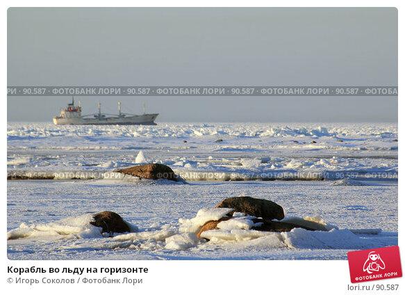 Корабль во льду на горизонте, фото № 90587, снято 25 октября 2016 г. (c) Игорь Соколов / Фотобанк Лори