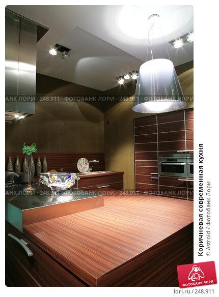 Коричневая современная кухня, фото № 248911, снято 8 апреля 2008 г. (c) Astroid / Фотобанк Лори