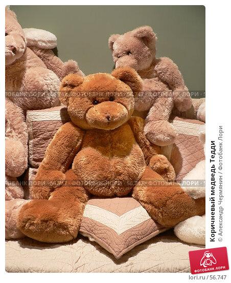 Коричневый медведь Тедди, фото № 56747, снято 16 августа 2005 г. (c) Александр Чермянин / Фотобанк Лори
