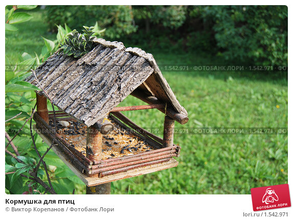 Кормушка для птиц. Стоковое фото, фотограф Виктор Корепанов / Фотобанк Лори