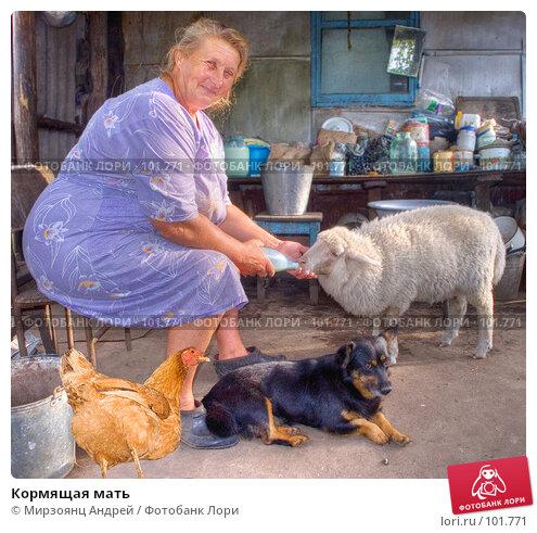 Купить «Кормящая мать», фото № 101771, снято 26 апреля 2018 г. (c) Мирзоянц Андрей / Фотобанк Лори