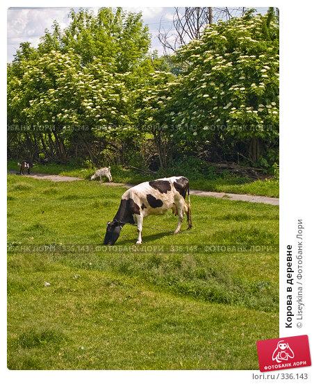 Корова в деревне, фото № 336143, снято 9 июня 2008 г. (c) Liseykina / Фотобанк Лори