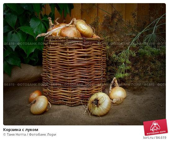 Купить «Корзина с луком», фото № 84619, снято 15 сентября 2007 г. (c) Таня Нотта / Фотобанк Лори
