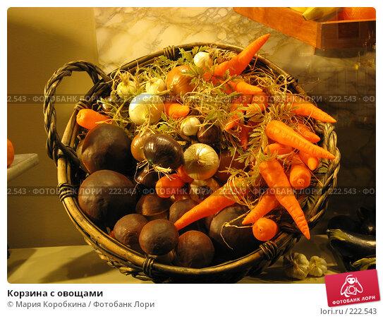 Корзина с овощами, фото № 222543, снято 23 декабря 2007 г. (c) Мария Коробкина / Фотобанк Лори
