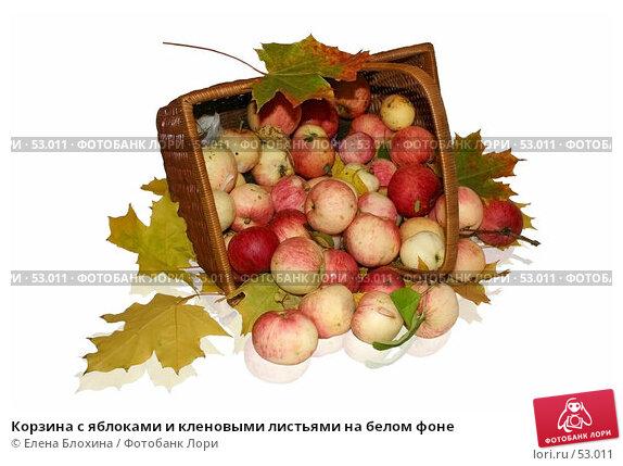 Корзина с яблоками и кленовыми листьями на белом фоне, фото № 53011, снято 8 октября 2006 г. (c) Елена Блохина / Фотобанк Лори