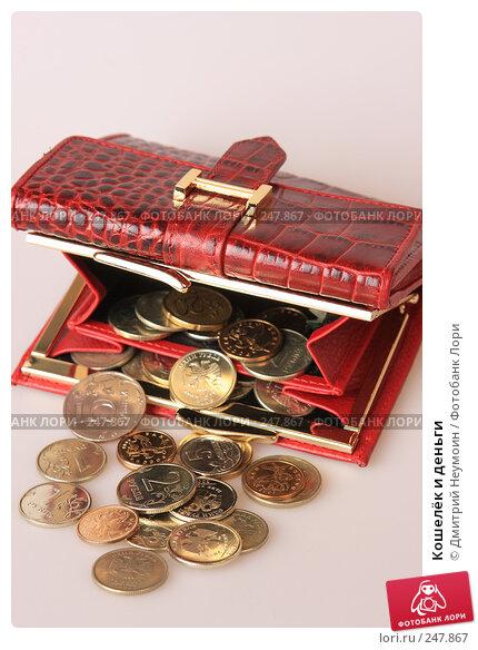 Купить «Кошелёк и деньги», эксклюзивное фото № 247867, снято 8 апреля 2008 г. (c) Дмитрий Неумоин / Фотобанк Лори