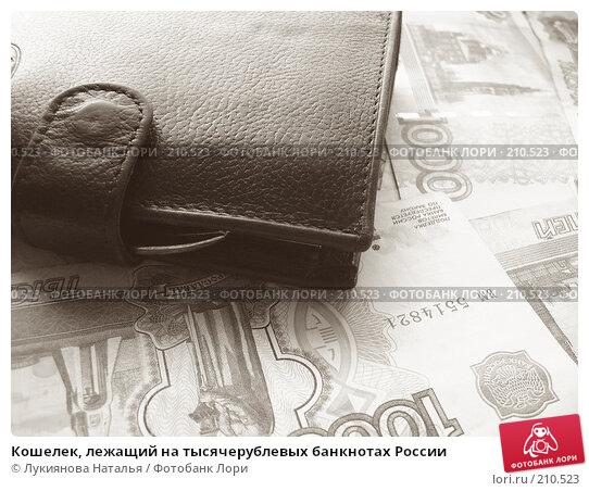 Кошелек, лежащий на тысячерублевых банкнотах России, фото № 210523, снято 17 февраля 2008 г. (c) Лукиянова Наталья / Фотобанк Лори