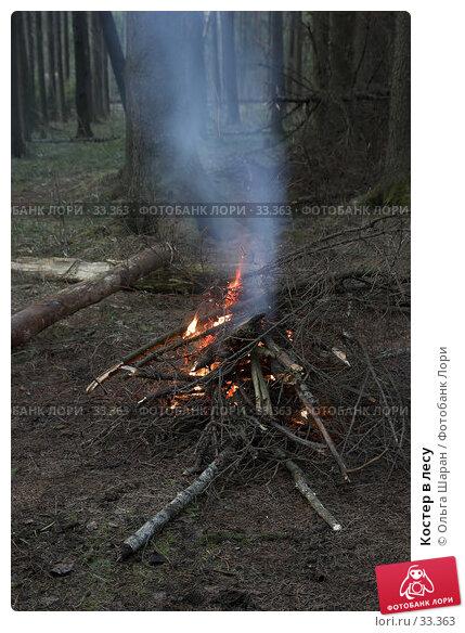 Костер в лесу, фото № 33363, снято 23 марта 2007 г. (c) Ольга Шаран / Фотобанк Лори