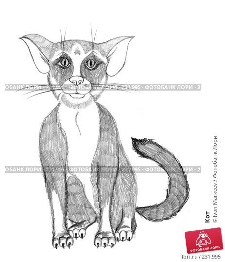 Кот, иллюстрация № 231995 (c) Василий Каргандюм / Фотобанк Лори