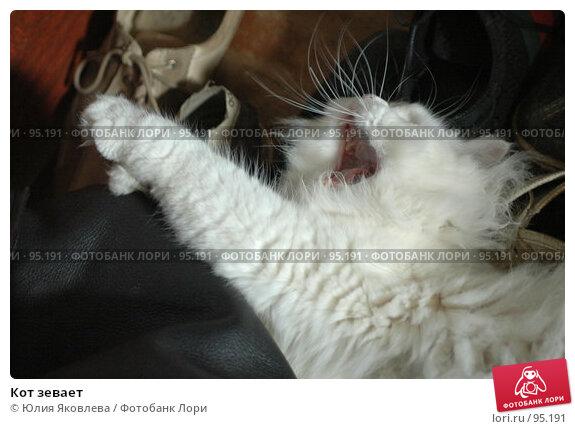 Кот зевает, фото № 95191, снято 9 августа 2006 г. (c) Юлия Яковлева / Фотобанк Лори