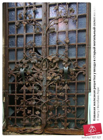 Кованая железная решетка у входа в старый могильный склеп на кладбище Пер Лашез, Париж, фото № 107127, снято 26 февраля 2006 г. (c) Harry / Фотобанк Лори