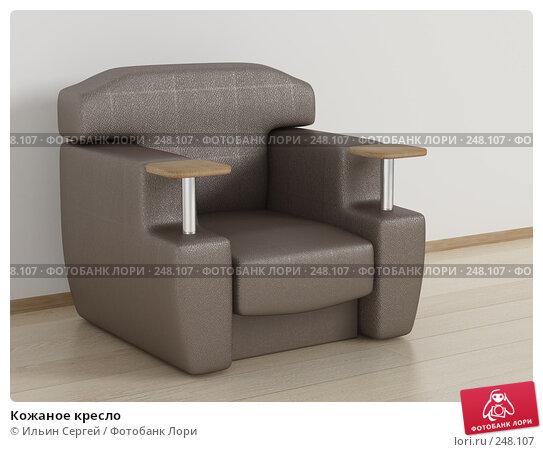 Кожаное кресло, иллюстрация № 248107 (c) Ильин Сергей / Фотобанк Лори