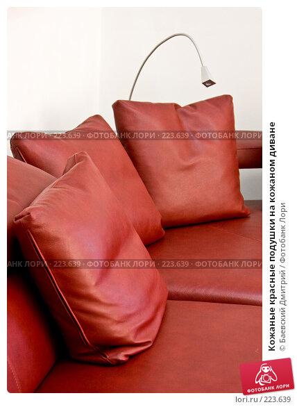 Кожаные красные подушки на кожаном диване, фото № 223639, снято 23 января 2017 г. (c) Баевский Дмитрий / Фотобанк Лори