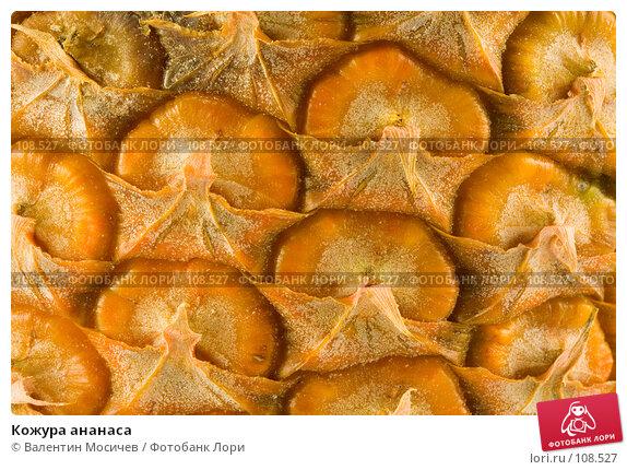 Купить «Кожура ананаса», фото № 108527, снято 5 мая 2007 г. (c) Валентин Мосичев / Фотобанк Лори