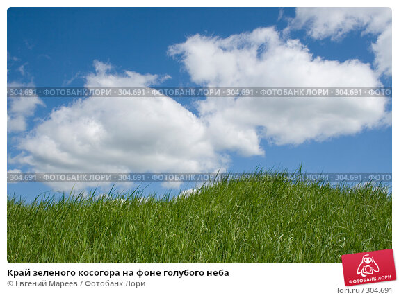 Купить «Край зеленого косогора на фоне голубого неба», фото № 304691, снято 30 мая 2008 г. (c) Евгений Мареев / Фотобанк Лори