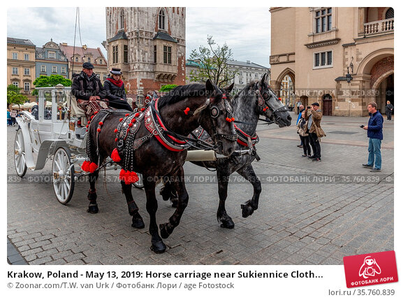 Krakow, Poland - May 13, 2019: Horse carriage near Sukiennice Cloth... Стоковое фото, фотограф Zoonar.com/T.W. van Urk / age Fotostock / Фотобанк Лори