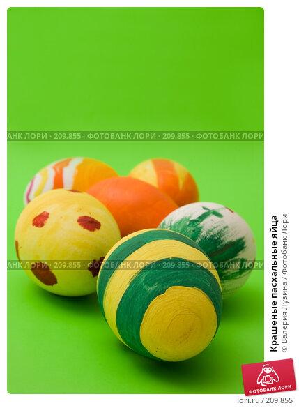Купить «Крашеные пасхальные яйца», фото № 209855, снято 26 февраля 2008 г. (c) Валерия Потапова / Фотобанк Лори