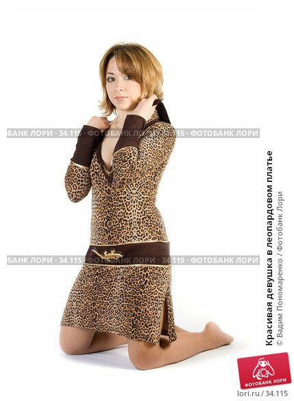Красивая девушка в леопардовом платье, фото № 34115, снято 24 марта 2007 г. (c) Вадим Пономаренко / Фотобанк Лори