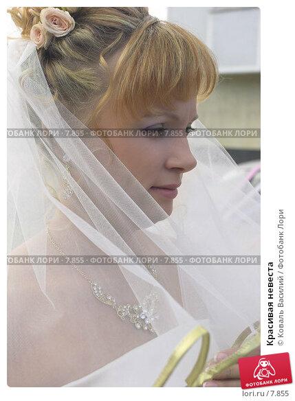 Красивая невеста, фото № 7855, снято 26 июля 2017 г. (c) Коваль Василий / Фотобанк Лори