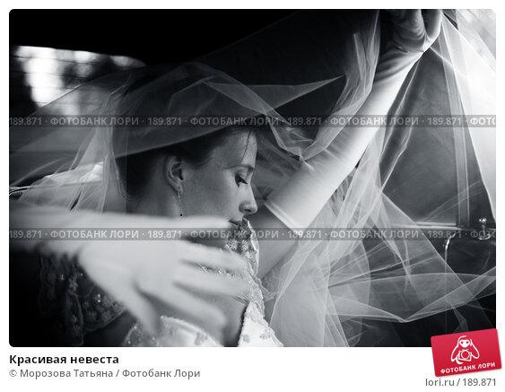 Купить «Красивая невеста», фото № 189871, снято 18 августа 2007 г. (c) Морозова Татьяна / Фотобанк Лори