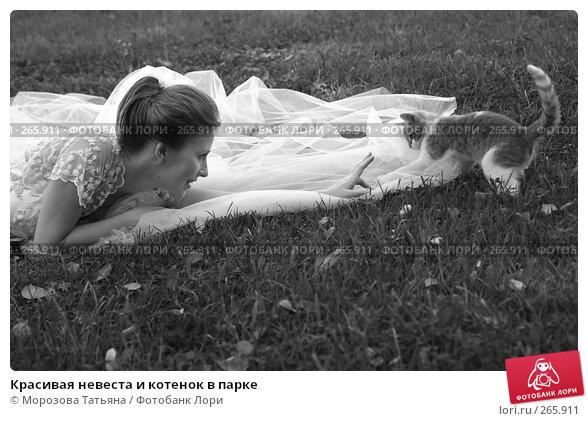 Купить «Красивая невеста и котенок в парке», фото № 265911, снято 18 августа 2007 г. (c) Морозова Татьяна / Фотобанк Лори