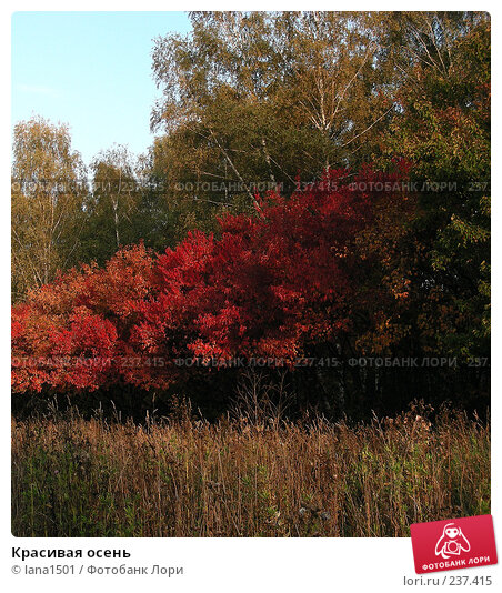 Красивая осень, эксклюзивное фото № 237415, снято 27 сентября 2007 г. (c) lana1501 / Фотобанк Лори