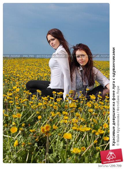 Красивые девушки на фоне луга с одуванчиками, фото № 299799, снято 14 мая 2008 г. (c) Майя Крученкова / Фотобанк Лори