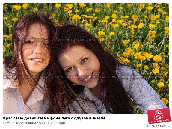 Красивые девушки на фоне луга с одуванчиками, фото № 313519, снято 14 мая 2008 г. (c) Майя Крученкова / Фотобанк Лори