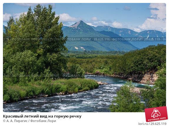 Купить «Красивый летний вид на горную речку», фото № 29625119, снято 6 августа 2018 г. (c) А. А. Пирагис / Фотобанк Лори