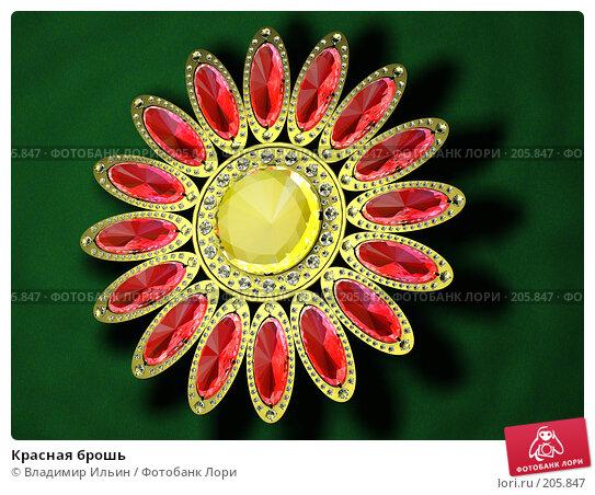 Красная брошь, иллюстрация № 205847 (c) Владимир Ильин / Фотобанк Лори