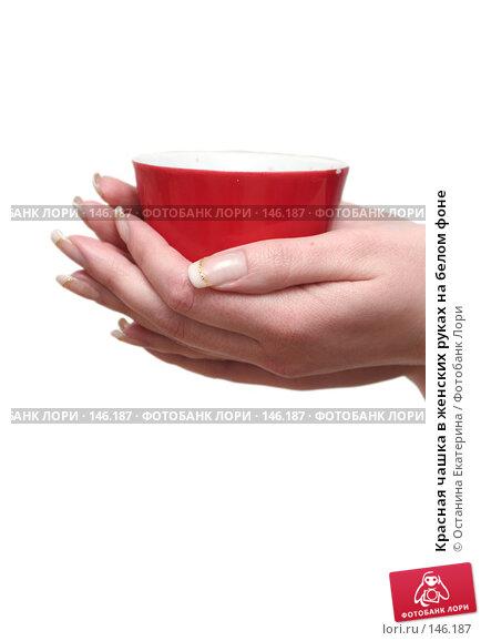 Красная чашка в женских руках на белом фоне, фото № 146187, снято 5 декабря 2007 г. (c) Останина Екатерина / Фотобанк Лори